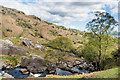 NY3607 : Rydal Beck by Ian Capper