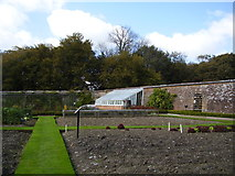 SS6140 : The walled garden at Arlington Court by Anthony Vosper