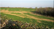 SX2187 : Field near Trew by Derek Harper