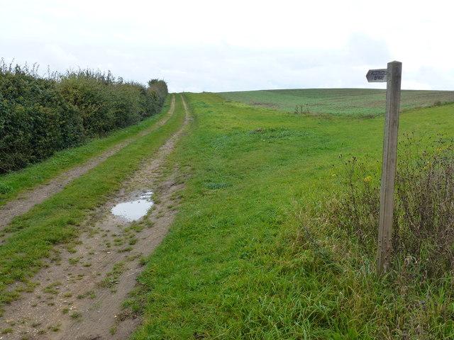 Lucas Lane near Burnham Overy Town, Norfolk