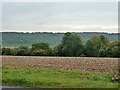 SU7797 : View south from Sprigs Holly Lane by Robin Webster