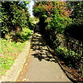 SX7898 : Yeoford railway station exit path by Jaggery