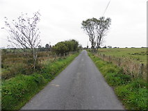 H5672 : Tullyneil Road, Mullaghslin Glebe by Kenneth  Allen