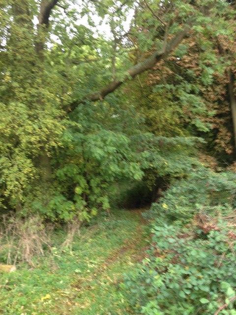 Footpath through Chicksands Firing Range