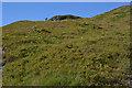 NM9992 : Hillside on Creag Salachain by Nigel Brown