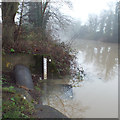 SP2965 : The water just reaches the flood gauge, River Avon, southeast Warwick by Robin Stott