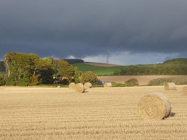 Field with bales at Bastleridge Farm