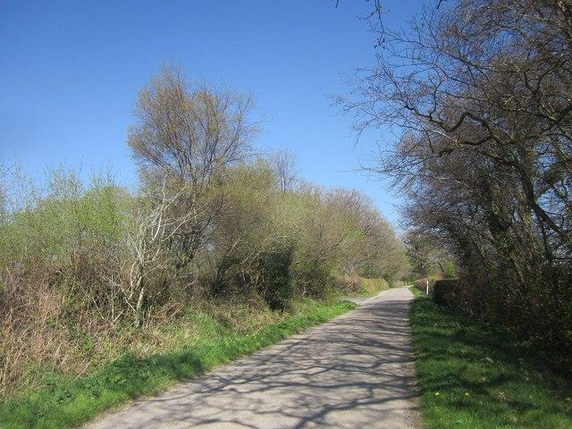 Road past Edgiford Cross