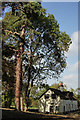 TQ3455 : Tillingdown Farm by Peter Trimming
