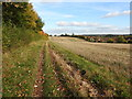 SU1769 : Bridleway approaching Marlborough by Vieve Forward
