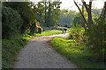 TQ0966 : Thames path near Walton-on-Thames by Alan Hunt