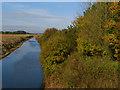 TA3020 : Winestead Drain, near Patrington by Paul Harrop