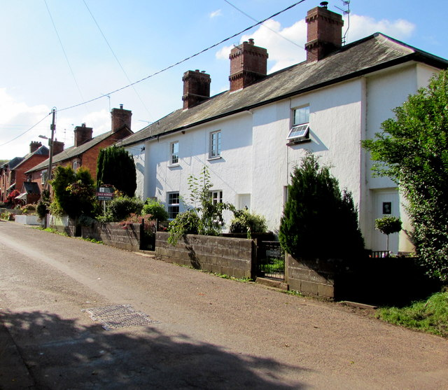 White houses in Yeoford