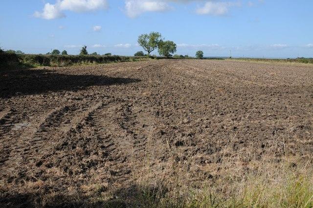 Ploughed field near Wickwar