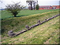 SJ5608 : Remains of the Forum at Viroconium Cornoviorum (Wroxeter Roman City) by Jeff Buck