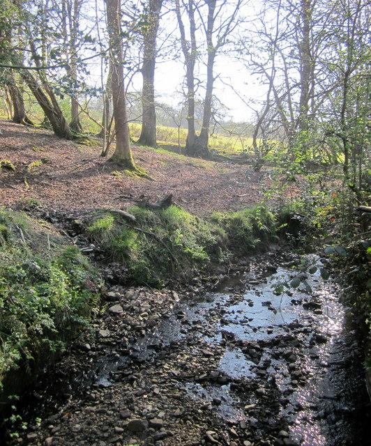 Stream, Buckham Hill