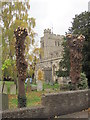 SP9211 : Pollarding the Churchyard Trees at Tring (5) Newly opened view of Church Tower by Chris Reynolds