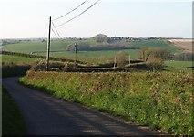 SS6917 : Road near Cadbury Barton by Derek Harper