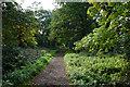 TQ3473 : Cox's Walk by Bill Boaden