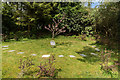 SD3691 : Pet Cemetery, Graythwaite Hall Gardens by Ian Capper