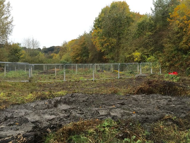 Silverdale: allotment site cleared for development