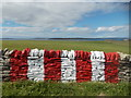 HY6329 : Stronsay: view over the airfield wall by Chris Downer