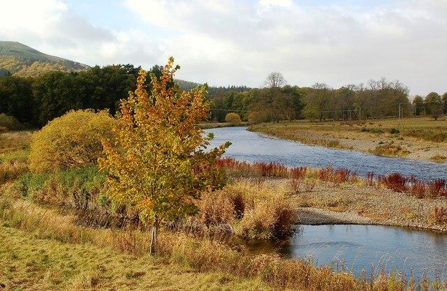 River Tweed View