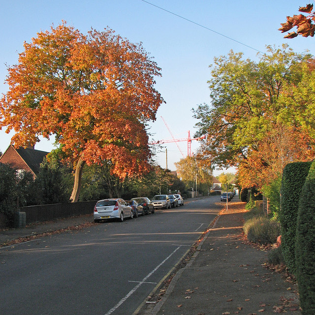 Sedley Taylor Road in autumn