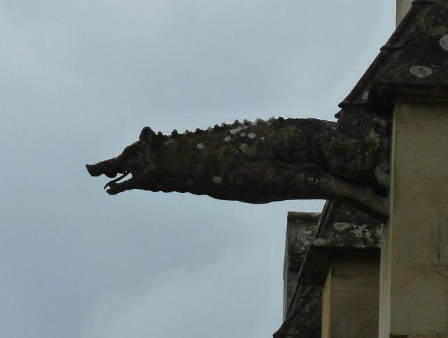 Woodchester Mansion - Boar gargoyle