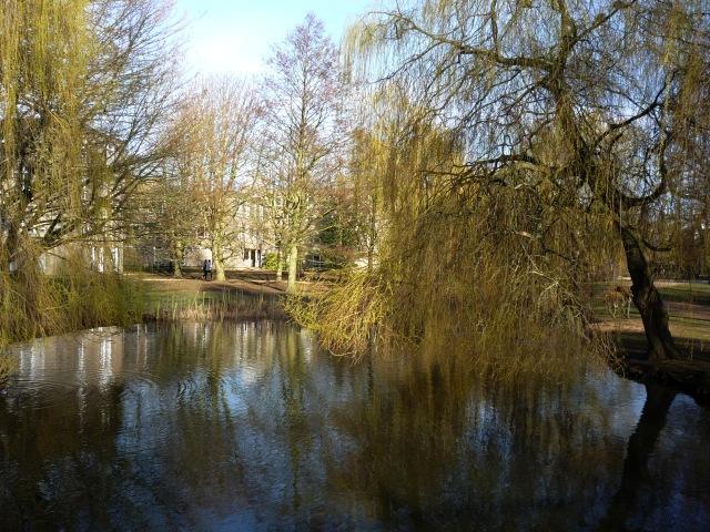 From Spring Lane Bridge
