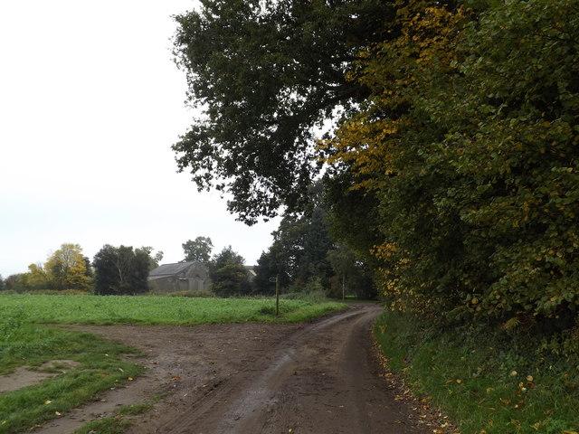 Lane & bridleway