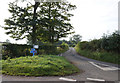 NY6529 : Road leading to Newbiggin by Ian S