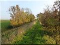 TF3234 : Footpath along an old sea bank by Richard Humphrey