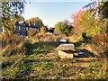 SJ8995 : Gorton Butterfly Garden by Gerald England