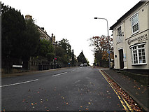 TM1645 : Fonnereau Road, Ipswich by Adrian Cable
