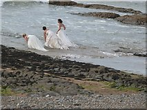 SS2006 : How odd! Such strange activity on the rocks by Bude breakwater by Derek Voller