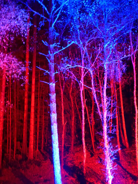 The Enchanted Forest, Pitlochry