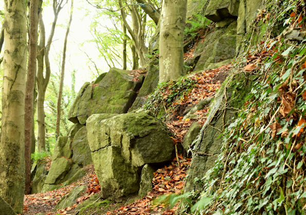 Old quarry, Killynether, Newtownards (October 2015)