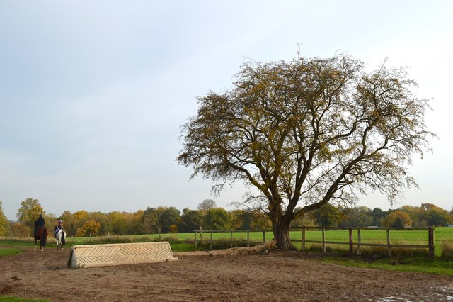 Somerford Park Farm Ride (5)