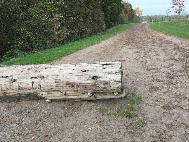 Somerford Park Farm Ride (11)