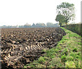 TM2690 : Ploughed field by Evelyn Simak