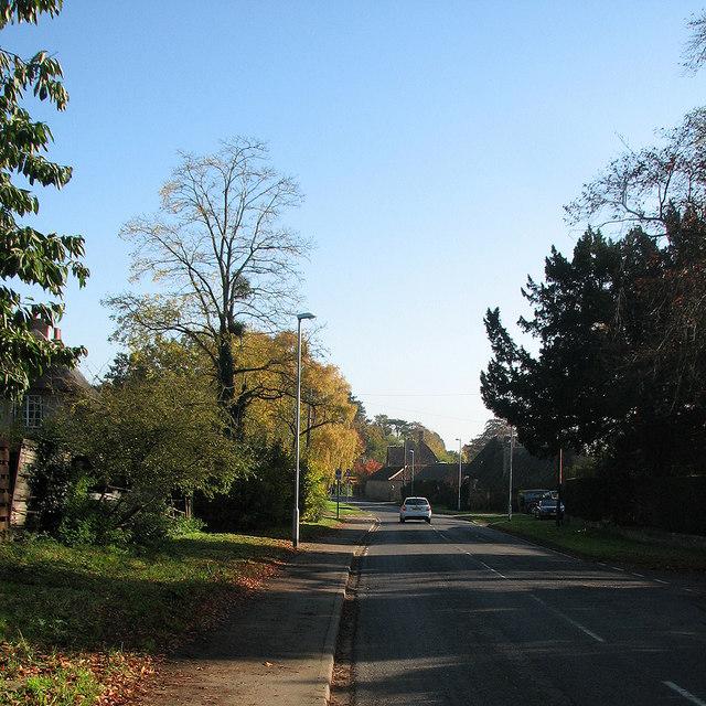 Barton: Comberton Road in autumn
