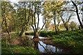 SJ8065 : Somerford Park Farm: pool next to farm ride by Jonathan Hutchins