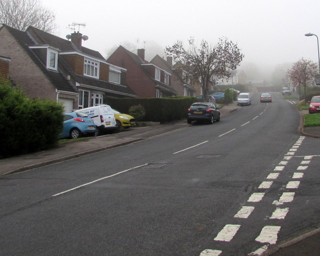 Foggy view up Rowan Way, Malpas, Newport