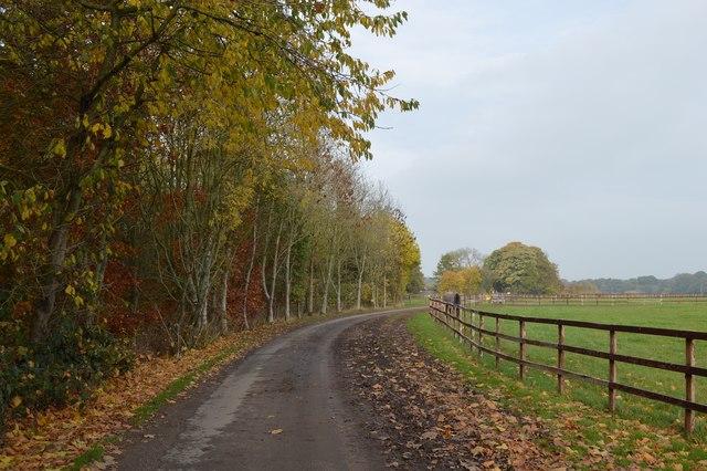 Somerford Park Farm Ride (21)