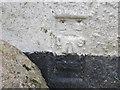 SX2194 : Ordnance Survey Flush Bracket G3520 by Peter Wood