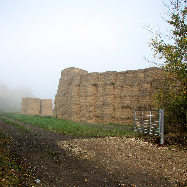 Field gate, bales and mist