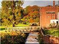 SJ8382 : Bridge over River Bollin at Quarry Bank Mill by David Dixon