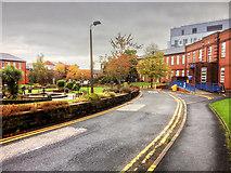 SD9106 : Royal Oldham Hospital, Fountain Gardens by David Dixon
