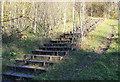 ST1899 : Steps from footbridge, near Oakdale by M J Roscoe